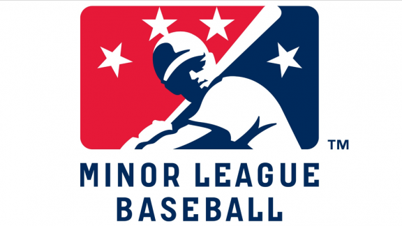 Asian Players 2014 MiLB Season Recap